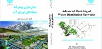 Advanced Modeling of Water Distribution Network